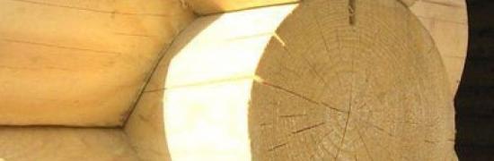 Оцилиндрованное бревно из каких деревьев делают?