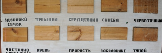 Виды дефектов древесины